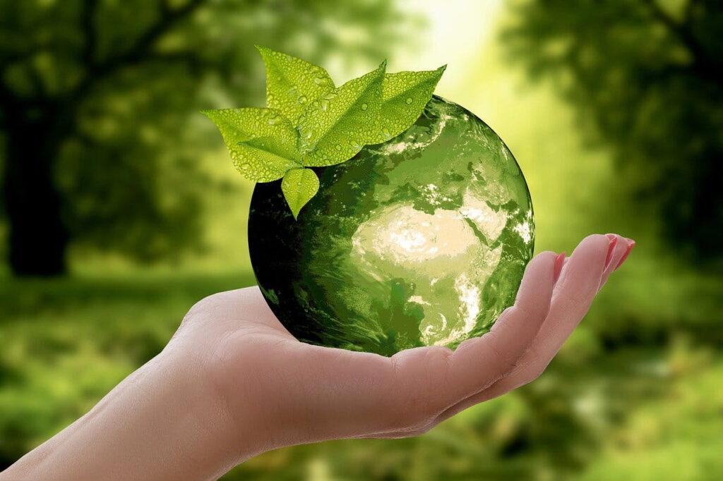 Principi del riciclaggio: come differenziare i rifiuti